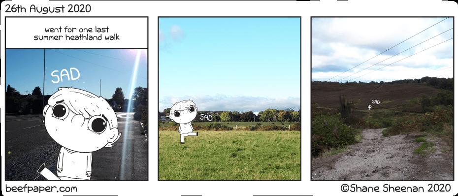 26th August 2020 – Last Summer Heathland Walk
